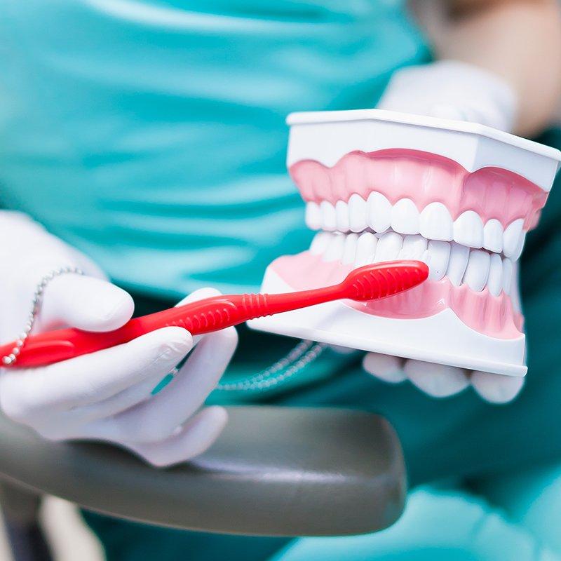 Mundhygiene und professionelle Mundhygiene: Zahnärzte am Stadtpark